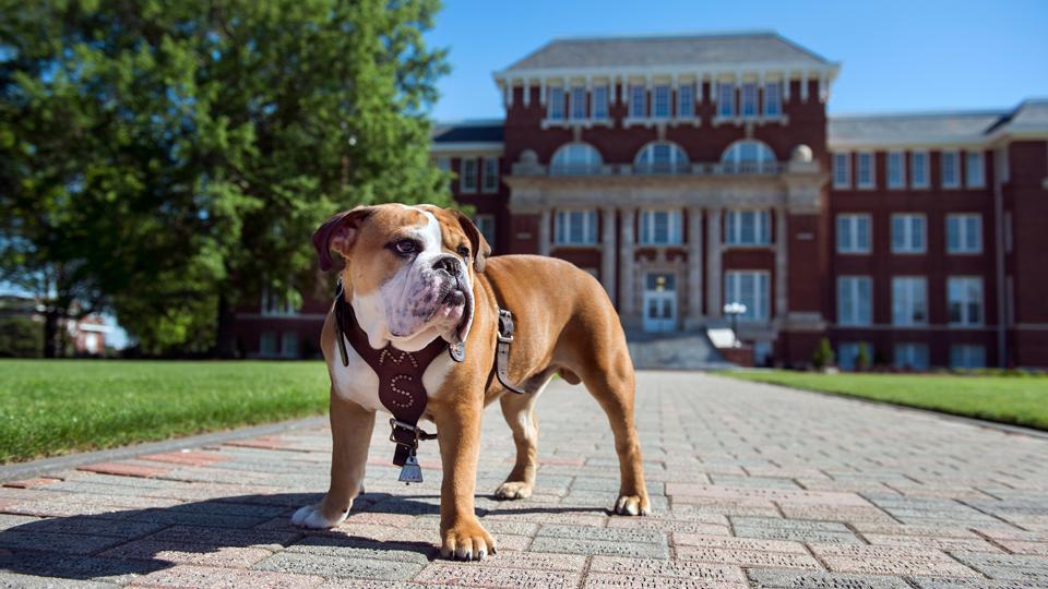 Mississippi State University - SECU | SECU