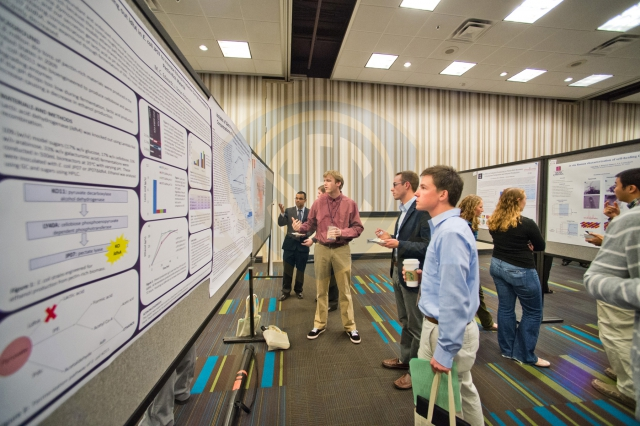 SEC Symposium Poster Exhibition Awards Announced Tuesday
