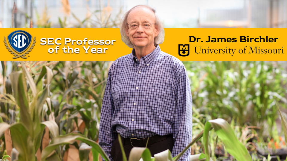 Missouri's James Birchler Named 2017 SEC Professor of the Year