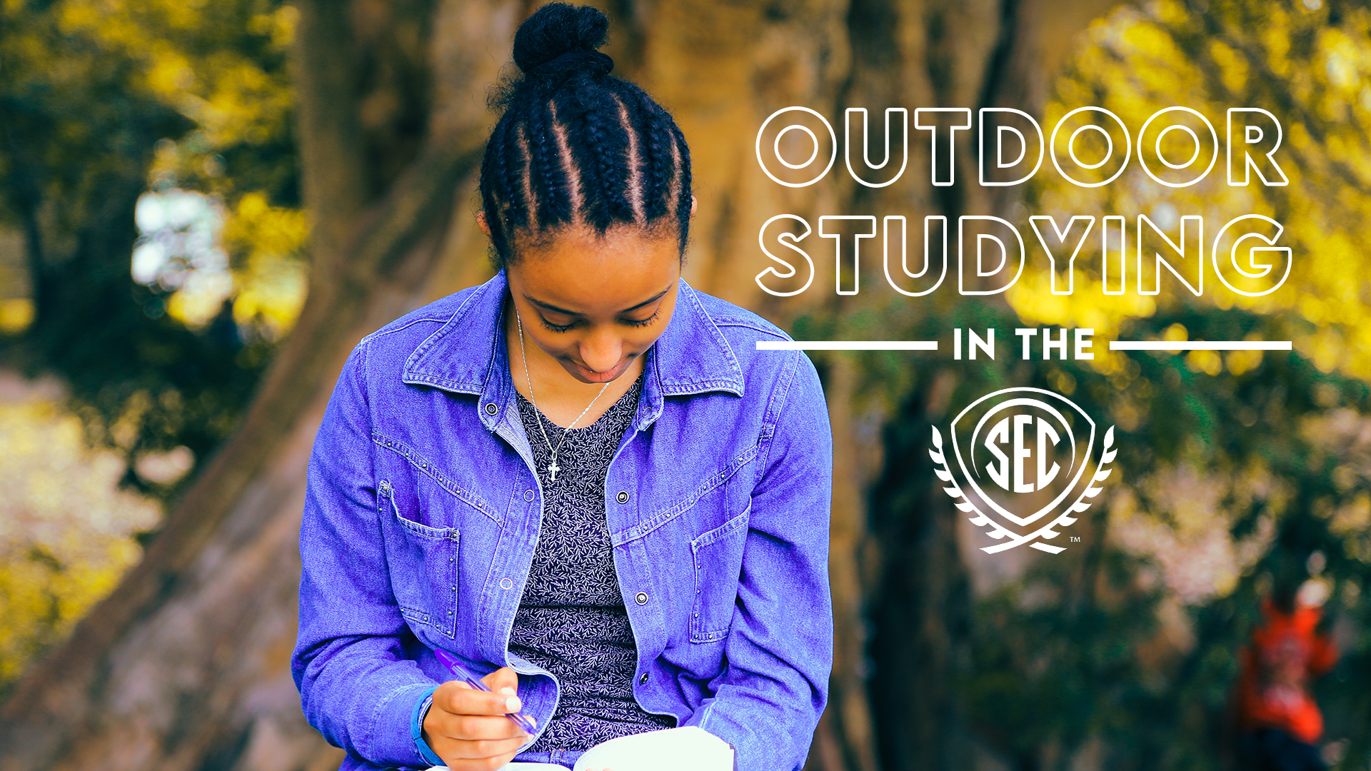 Sunny and 75 Degrees: Your Guide to Outdoor Studying in the SEC