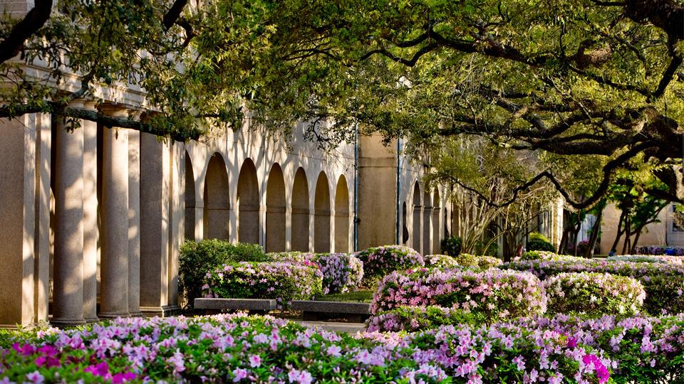LSU to Host First Virtual SEC Emerging Scholars Workshop
